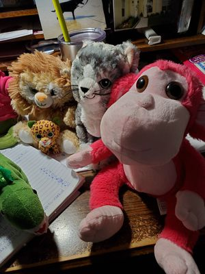 Nine plushies very cute and cuddly for Sale in Land O Lakes, FL