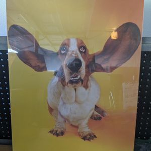 Poster - Basset Funny for Sale in Simi Valley, CA