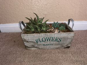 Display plants real plant with fake plants high end table decoration for Sale in Las Vegas, NV