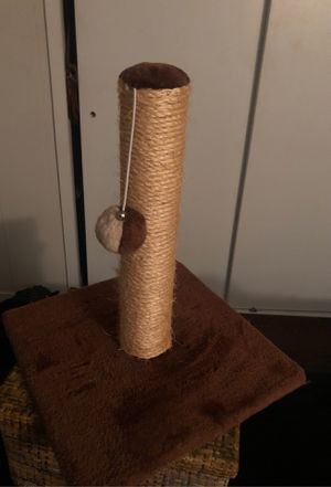 Scratching post with Toy ball for Sale in Rockville, MD