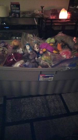 The Mother load of Ty beanie babies! for Sale in Clifton Heights, PA