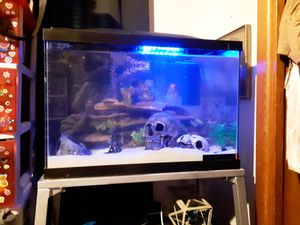 20 gallon fish aquarium for Sale in Abilene, TX