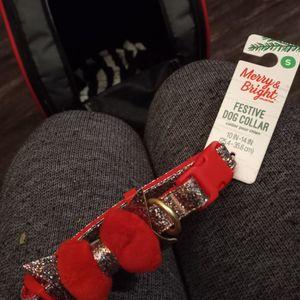 Small Dog Collar for Sale in Salt Lake City, UT