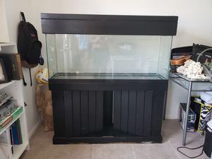 Used 55 Gallon Fish Tank + Stand & Accessories for Sale in Miami Beach, FL