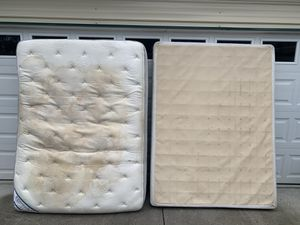 FREE----Queen Sealy Box Spring & Mattress----FREE for Sale in New Port Richey, FL