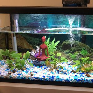 Aquarium For Sale for Sale in Gaithersburg, MD