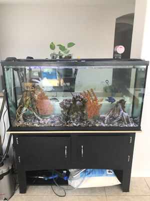 60 gallon Aquarium Fish Tank for Sale in Wildomar, CA