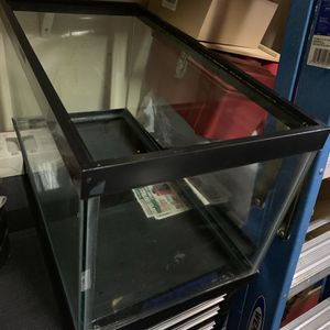 10 Gallon Fish Tank Complete Setup! for Sale in Seattle, WA