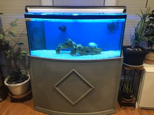 65 gallons with sump pump fish tank for Sale in Fairfax, VA