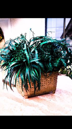 GREAT HOME DECOR HANGING PLANT (FAKE) for Sale in San Dimas, CA