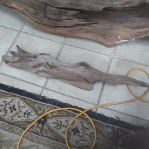 3 Foot Driftwood for Sale in Alexandria, VA