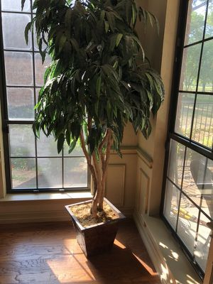 Fake Tree plant - Synthetic Ficus tree for Sale in Richardson, TX