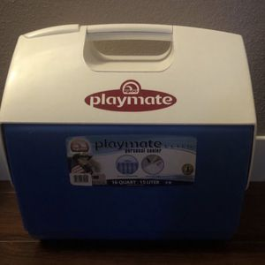 Personal Cooler for Sale in Parkland, WA