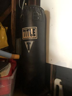 Professional Punching bag and speed bag.. 75 dollars firm... for Sale in Chicago, IL