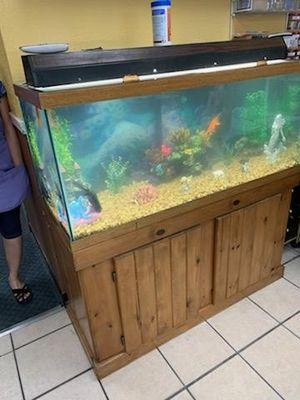55 gallon fish tank for Sale in Mesa, AZ