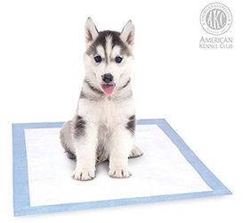 Pet dog training pads (2 Packages Total) for Sale in Los Angeles,  CA