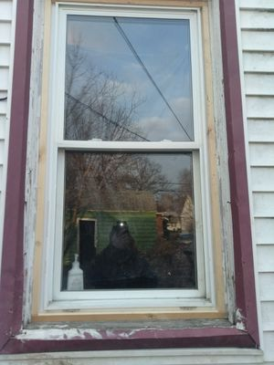 Windows variety of sizes prices range with different sizes I can install as well for Sale in Detroit, MI