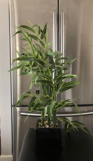 Artificial Decorative Plant for Sale in Rosedale, MD