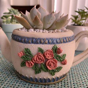 Vintage Teacup ☕️ succulent arrangement 🌵🌸 for Sale in National City, CA
