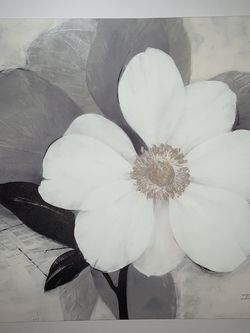 Floral Canvas Art for Sale in Lynnwood,  WA