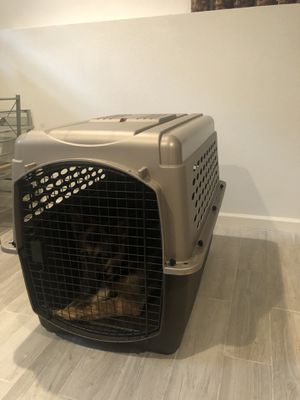 Dog crate - 80lb dog for Sale in Danville, CA