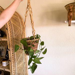 Hanging wicker basket for Sale in Tempe, AZ