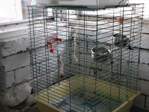 Bird Cage for Sale in Hastings, MI
