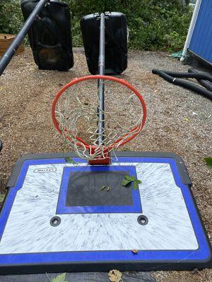 Lifetime Basketball Hoops for Sale in Seattle, WA