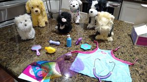 American girl dogs for Sale in Snohomish, WA