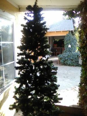 Oregon pine for Sale in Sanger, CA