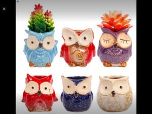 ROSE CREATE 6 Pcs 3 Inches Owl Pots, Little Ceramic Succulent Owl Planters with Drainage Holes for Sale in Riverside, CA