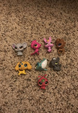 Lps lot 8 pets for Sale in Rolla, MO