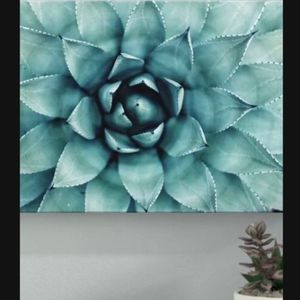 Turquoise Succulent Wrapped Canvas Art Wall Decor Decoration Print for Sale in Kissimmee, FL