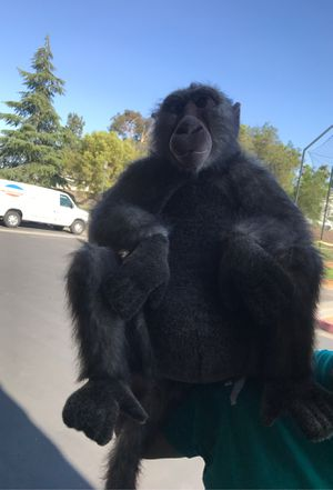 Monkey stuffed toy for Sale in Moreno Valley, CA