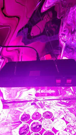 600 watt Willis Reflector LED Grow Light for Sale in St. Louis, MO