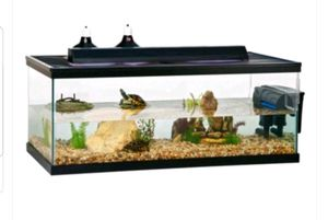 Turtle or Amphibian Tank for Sale in Lugoff, SC