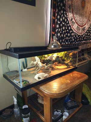 Bearded dragon cage and accessories for Sale in Wichita, KS