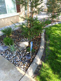Need curbing for Sale in Bakersfield, CA
