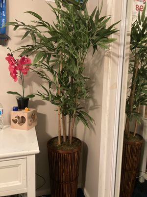 Artificial Fake Bamboo plant ! for Sale in Riverside, CA