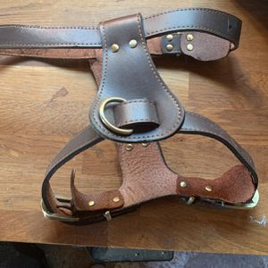 Leather Dog Harness for Sale in San Pablo, CA