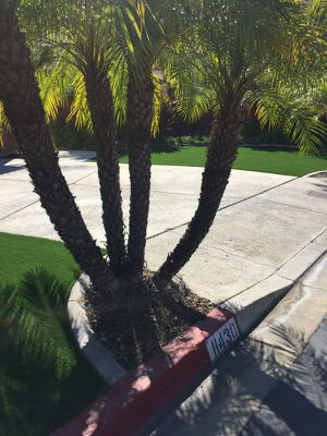 Turf for sale for Sale in Poway, CA