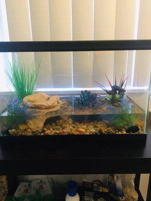 Baby Aquatic turtle (Tank with aquarium stand, food ,and accessories included) for Sale in Los Angeles, CA