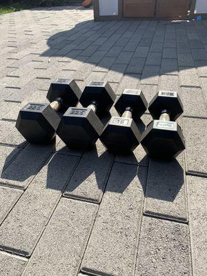 Hampton dumb bell weights for Sale in Encinitas, CA