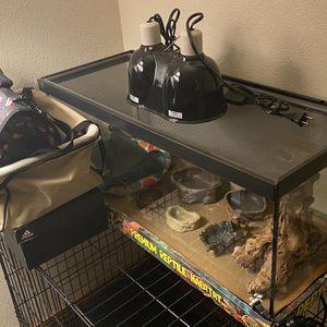 Premium Reptile Habitat for Sale in Everett, WA