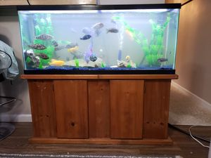 Fish tank aquarium 55gl wood stand with fish for Sale in Los Angeles, CA