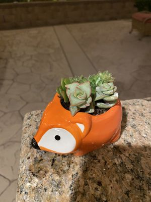 Succulent ceramic fox 🦊 pot for Sale in Riverside, CA