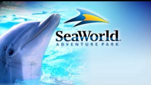 SeaWorld and aquatica tickets for Sale in Fort Myers, FL