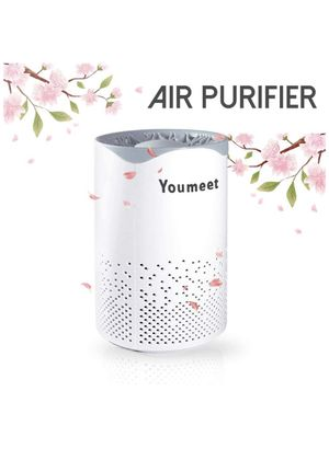 Air purifier for Sale in Houston, TX