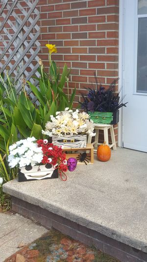 "Spooky Halloween Arrangements ""Boo Boxes"" ($35ea or 3 for $75!) for Sale in Virginia Beach, VA"