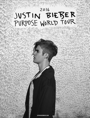 2 Tickets for Justin Bieber Purpose Tour for Sale in Tallahassee, FL